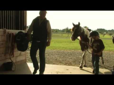 Beginner Horsemanship Dos & Don'ts