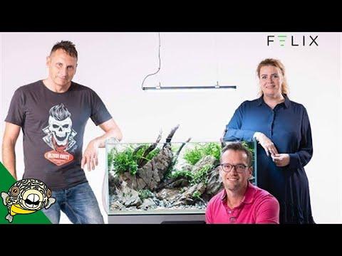 felix-smart-aquarium-huh-aquarium-co-op
