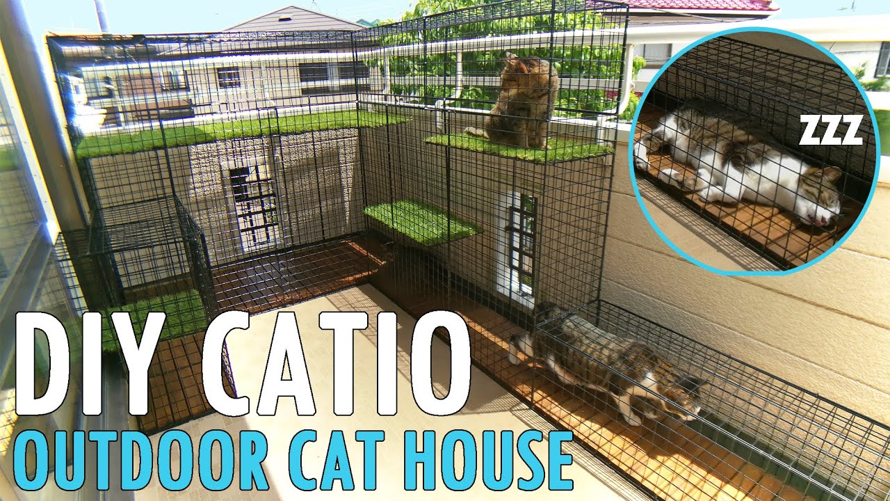 diy building my cat an outdoor house catio patio for cat