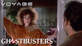 Dana Tries To Seduce Venkman | Ghostbusters | Voyage