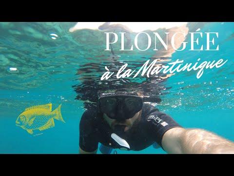 Plongée sous-marine à la Martinique