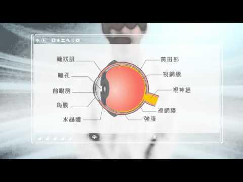 什麼是近視? 為何會近視? 貝茨中川式, 知視家愛眼儀
