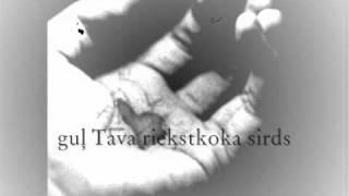 Tumsa - Riekstkoka sirds