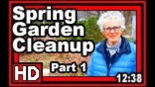 Spring Cleanup Part 1 - Wisconsin Garden Video Blog 865