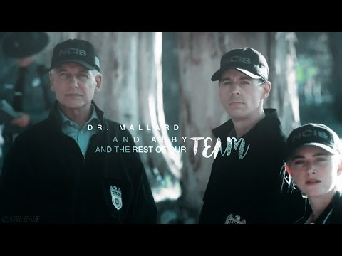 [ NCIS ] The Rest Of Our Team | Season 14 Tribute