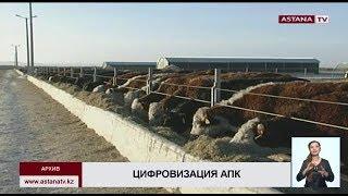 Онлайн-обучение для фермеров запустят в 2020 году в Казахстане