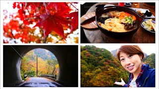 Autumn in Japan! What it's like and what's so great about it :)