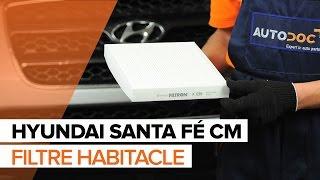 Manuel du propriétaire Hyundai Santa Fe cm en ligne