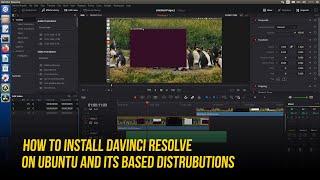 Davinci Resolve Ubuntu Installation   Best Professional Video Editing Software for Linux