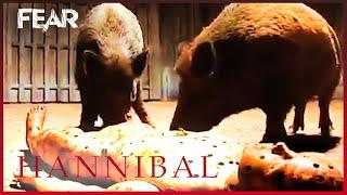 Training Man-Eating Boars   Behind The Screams   Hannibal