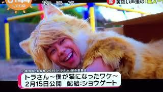 2019.1.27 完成披露鑑賞会.