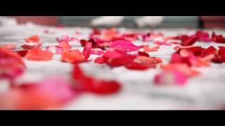 Екатерина и Петр   свадебный ролик v 4 FINAL