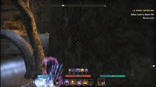 The Elder Scrolls Online: The game is utterly broken right now