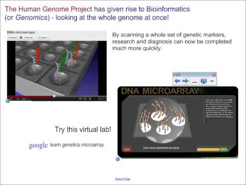 Process - Genetic Engineering and Biotechnology