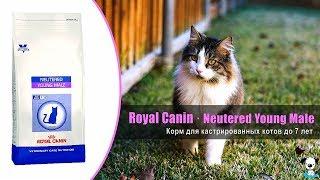 Корм для кастрированных котов возрастом до 7 лет · Royal Canin Neutered Young Male