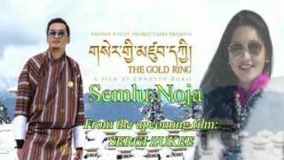 Dzongkhag song