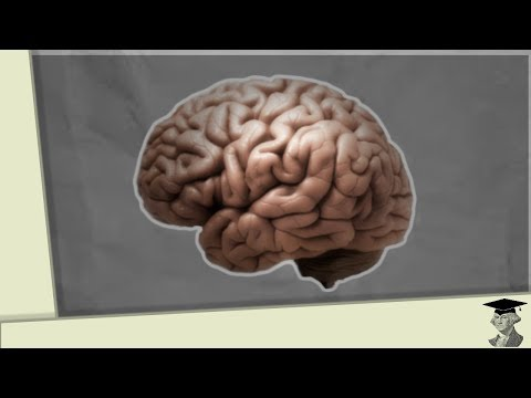 A Creepy Cognitive Quirk | The Mere Exposure Effect