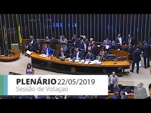 Plenário - Sessão de votação - 22/05/2019 - 16:50