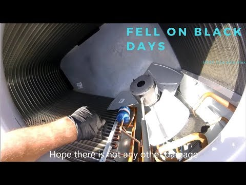 HVAC Life with Alex - Fell on black days
