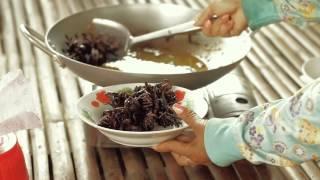 Cooking & Eating Tarantulas