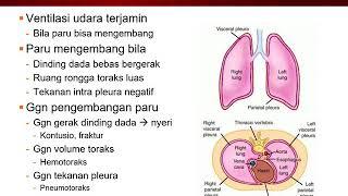 TRIBUN-VIDEO.COM - Abses paru merupakan suatu penyakit pau-paru yang menyebabkan adanya infeksi kare.