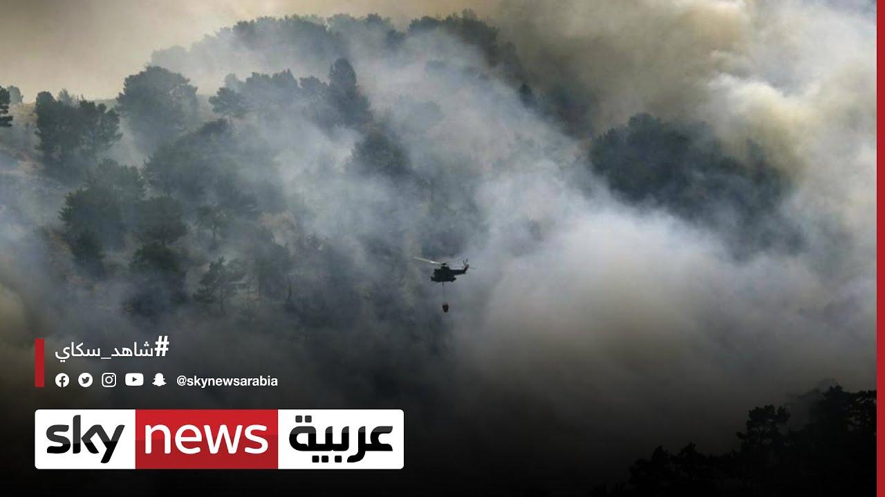 تجدد حرائق الغابات في لبنان وتوسع رقعتها لتصل إلى الحدود السورية
