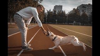 Как Сделать Фото с Собакой в Инстаграм. ФотоVlog #01