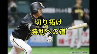 阪神タイガース新応援歌(木浪、近本)