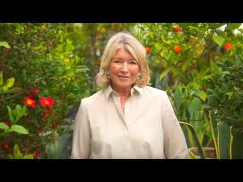 Martha Stewart Is Debuting New Cruise Excursions This Year
