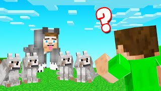 Which WOLF Is The REAL SLOGO!? (Minecraft Guess Who)