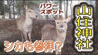【パワースポット】 山住神社 jinja shrine【ラディアルテレビ】 ep.12