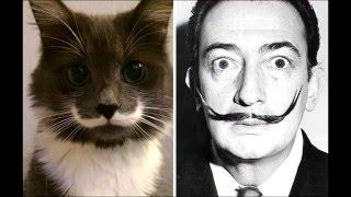 Животные, похожие на знаменитых людей!