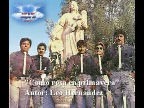 Leo y su grupo imagen de amor - Como rosa en primavera