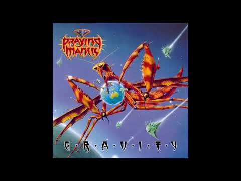 Praying Mantis- Destiny in Motion