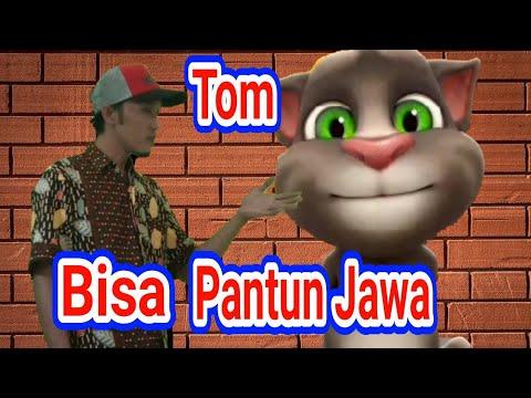 Pantun Jawa || Tom punya pantun Jawa || Lucu Tom menyerah ...
