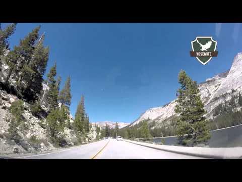 3 Stops onTioga Road in Yosemite National Park