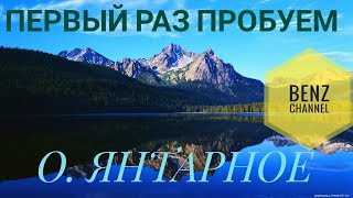 Русская Рыбалка 4 РР4 озеро Янтарное и Медвежье Погоняем КАРПИКОВ