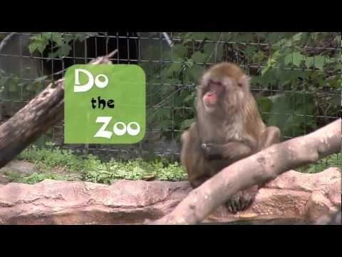 """Blank Park Zoo """"Do the Zoo"""""""