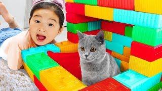 Boram et Chat Jouent Dans la Petite Maison pour Enfants