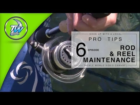 Fishing Rod And Reel Maintainance
