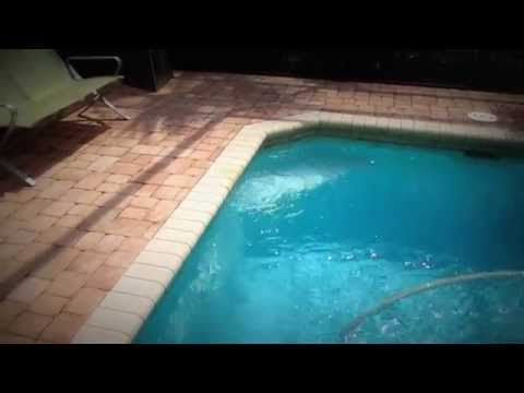 Bubbles in Pool - Solar Pool Heating Startup