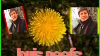 Louis Neefs Laat ons een bloem