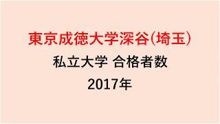 東京成徳大学深谷高校 大学合格者数 2017~2014年【グラフでわかる】