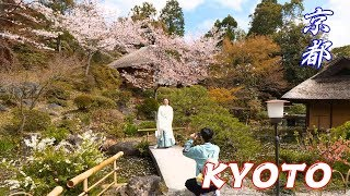 KYOTO WALKING FROM KIYOMIZUDERA TEMPLE TO SANNENZAKA - NINENZAKA - KODAIJI TEMPLE - 4K 60FPS HDR