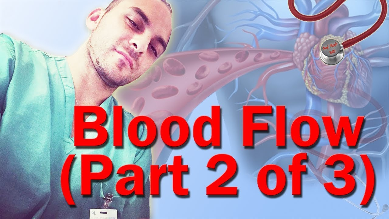Blood flow through the heart made easy part 2 of 3 youtube blood flow through the heart made easy part 2 of 3 ccuart Image collections