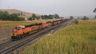 [HD] BNSF Loaded Coal Train Climbing Parkman Hill - September 15, 2020