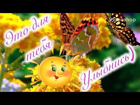 Доброе Утро Лови кусочек летнего настроения и тепла  Прекрасного дня