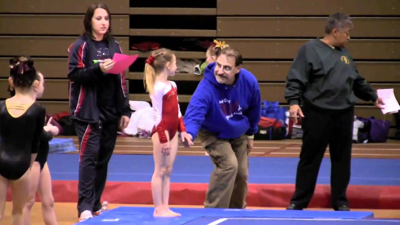 illinois state gymnastics meet 2014 level 7