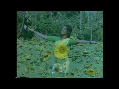 Poonkuyil Nitham HD Song | Marikozhundhu