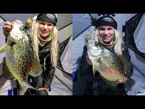 Hammering HUGE Crappie In Otter Tail County
